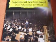 Neujahrskonzert - New Year Concert