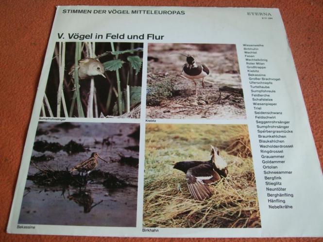 Stimmen Der Vögel Mitteleuropas - V. Vögel In Feld Und Flur